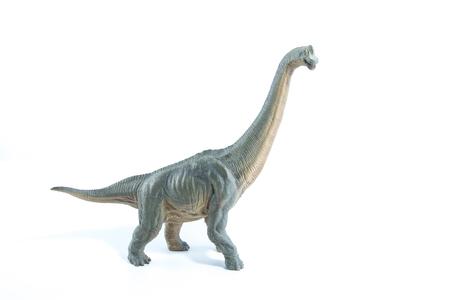 Green Brachiosaurus altithorax from the Late Jurassic full body white background