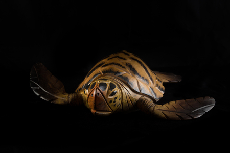 Turtle carved on wood isolated in black background Stock Photo