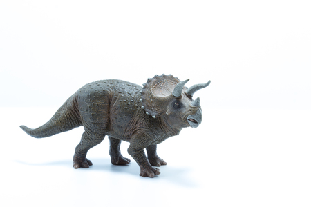 Triceratops dinosaurs toy isolated on white background - side view