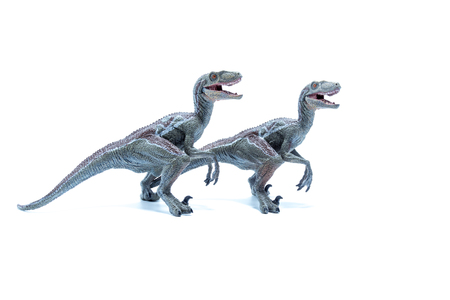 Two great Velociraptor dinosaurs toy side by side isolated on white background - side view Stock Photo