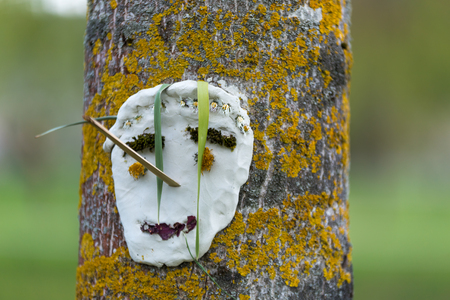 Handmade face sculpture smiling made by children hanged on a tree. Face made with wood sticks, flowers, plaster and leaves.