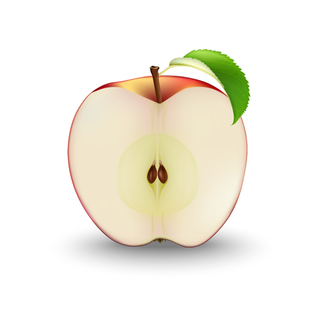 Vector Realistic Red Apple Cut in Half With Seeds and Leaf. Sliced Fruit. Detailed 3d Illustration Isolated On White. Design Element For Label, Web Or Print Packaging.