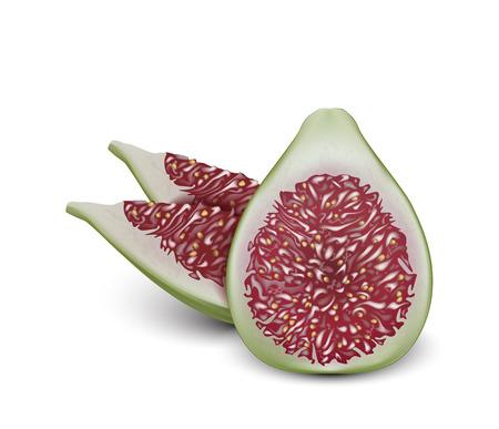 Wspólne owoce figowe realistyczne wektor projekt. 3d rys. cięcie. Pokrojony kawałek. Dobry do projektowania opakowań.