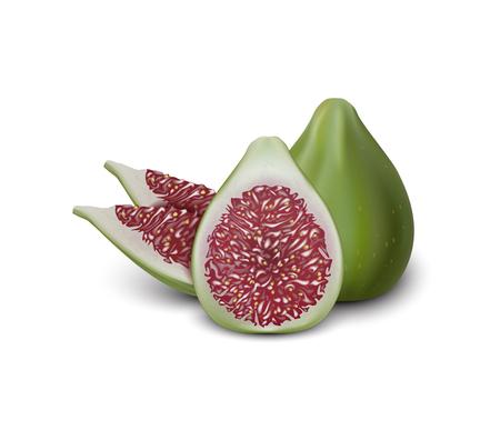 Rote und grüne Abb. Realistische 3D-Feigenscheiben. Detaillierte 3d Illustration lokalisiert auf Weiß. Gestaltungselement für Web- oder Druckverpackungen. Vektor-Illustration. Vektorgrafik