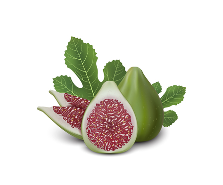 Red and Green Fig. Realistic 3d Figs With Leaves. Detailed 3d Illustration Isolated On White. Design Element For Web Or Print Packaging. Vector Illustration.