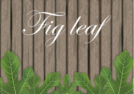 Liście figowe na drewnianej desce do krojenia. Liść figowy. Elementy projektu banera. Ilustracja wektorowa.