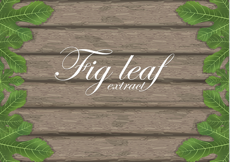 Fig leaves on wooden cutting board. Figs leaf. Banner design elements. Vector illustration. Vettoriali