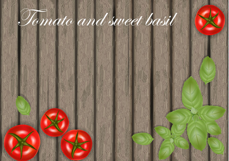 Basil leaves on wooden background with tomatoes. Tomato banner on wood.  Place for text. Vector illustration.  イラスト・ベクター素材
