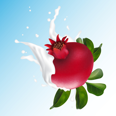 Milk or yogurt splash pomegranate fruit realistic 3d illustration for packaging. Pomegranate is falling into milk cocktail. Vector 일러스트