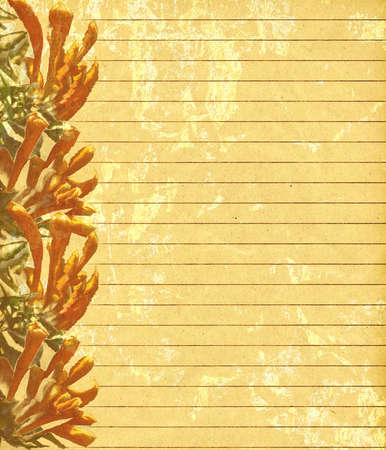 aureate: Paper notes: a decorated golden paper with nice flowers
