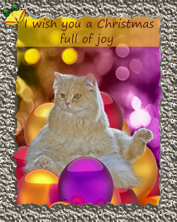 Christmas card: a beautiful cat sitting on balloons photo