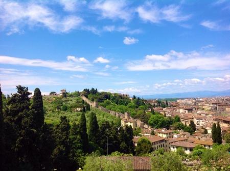 forte: Forte Belvedere, Florence