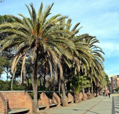 Pegasus Park, located in Barcelona Spain
