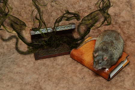 necromancy: Rat sitting on a leather-bound book near magic chest