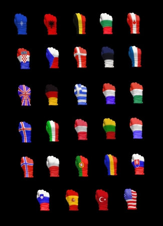 north atlantic treaty organization: Flags of North Atlantic Treaty Organization members