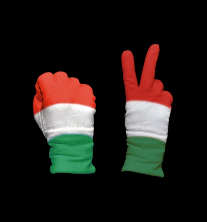 foreign policy: Clenched fist in leather glove, and hand with victory gesture in a glove decorated with Hungary flag