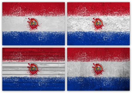 paraguayan: Collage of Paraguayan flag with different texture backgrounds Stock Photo