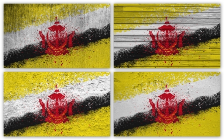 Collage of Brunei  flag with different texture backgrounds Stock Photo - 15923870