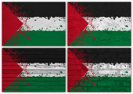 Collage of Palestine flag with different texture backgrounds Stock Photo - 16006603