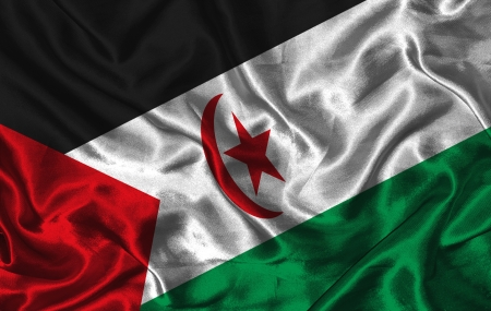 sahrawi arab democratic republic: Waving colorful Sahrawi Arab Democratic Republic flag on a silk background