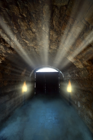 Ancient gate in the light on the dark dungeon