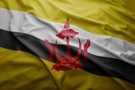 brunei: Waving colorful Brunei flag