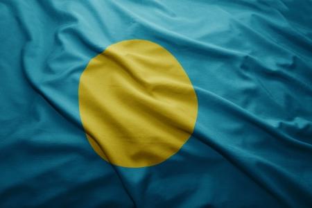 Waving colorful Palau flag photo