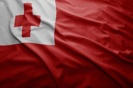 tonga: Waving colorful Tonga flag