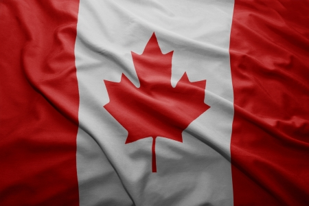 canadian flag: Waving colorful Canadian flag