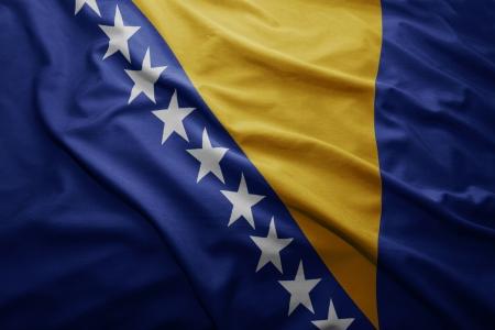 bosnian: Waving colorful Bosnian flag