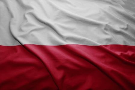 polish flag: Waving colorful Polish flag
