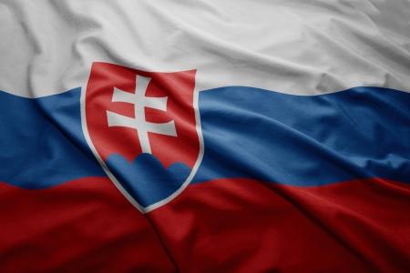 slovak: Waving colorful Slovak flag Stock Photo