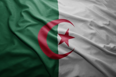 algerian flag: Waving colorful Algerian flag