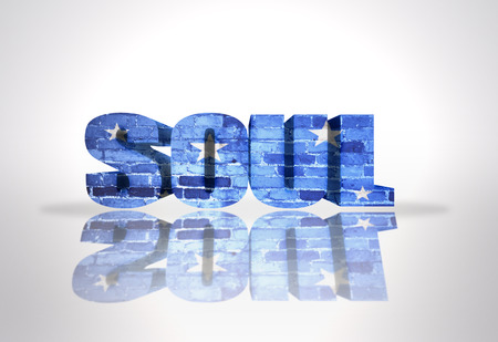 Text Soul on a white background photo