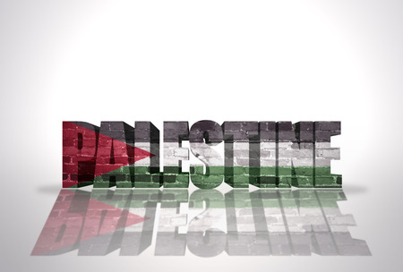Word Palestine with National Flag on the white background