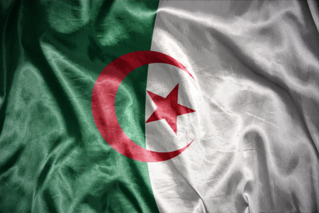 algerian flag: waving and shining algerian flag