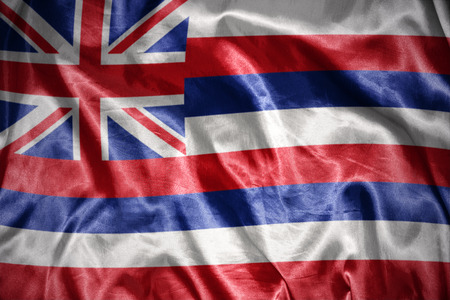 us sizes: waving and shining hawaii state flag