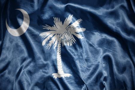 us sizes: waving and shining south carolina state flag