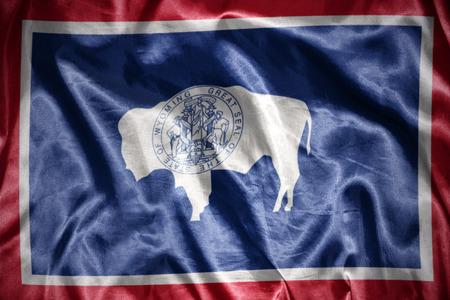 us sizes: waving and shining wyoming state flag