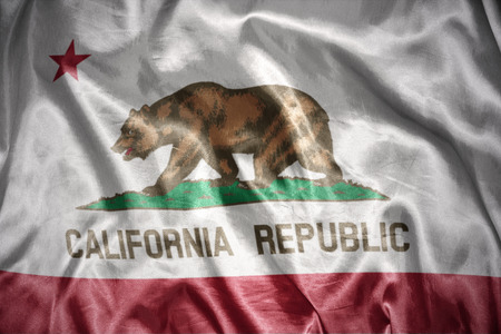 us sizes: waving and shining california state flag