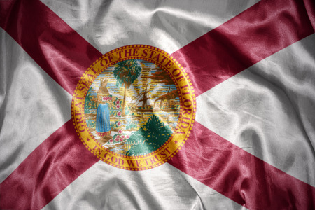 us sizes: waving and shining florida state flag