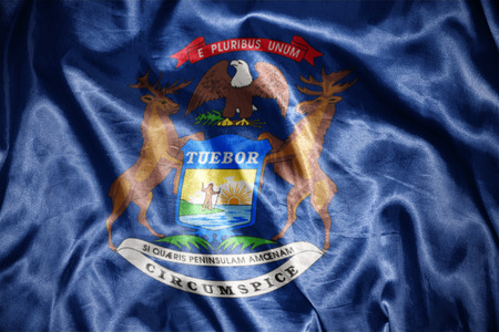 us sizes: waving and shining michigan state flag