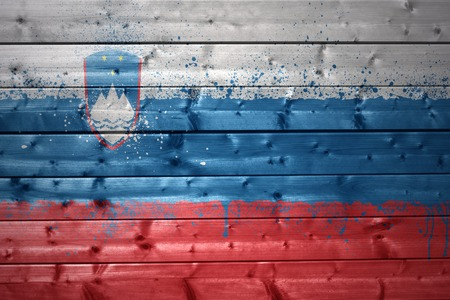 slovenian: colorful painted slovenian flag on a wooden texture
