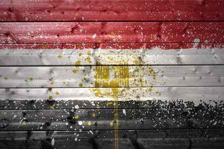 colorful painted egyptian flag on a wooden texture photo