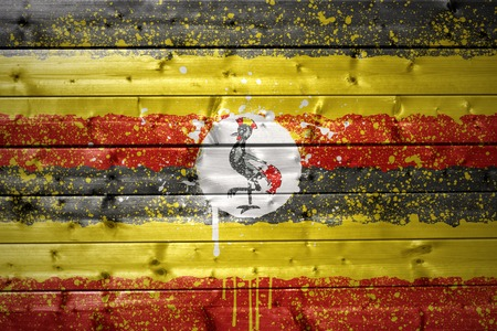 ugandan: colorful painted ugandan flag on a wooden texture