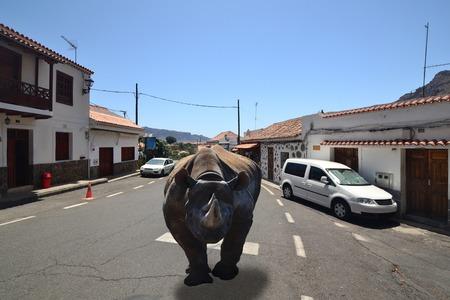 imminence: furioso rinoceronte negro corriendo por las calles de una pequeña ciudad Foto de archivo