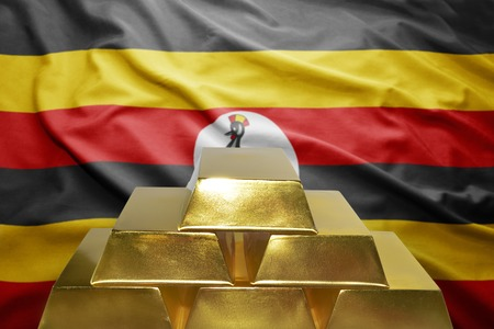 ugandan: shining golden bullions on the ugandan flag background