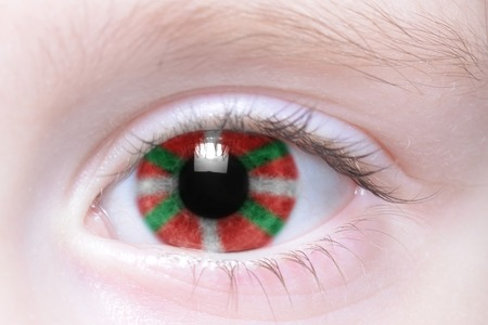 the basque country: humans eye with national flag of basque country