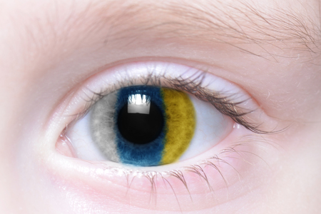 canarian: humans eye with national flag of canary islands Stock Photo