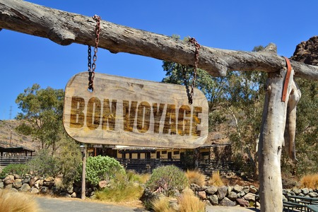 voyage: old wood signboard with text  bon voyage hanging on a branch Stock Photo